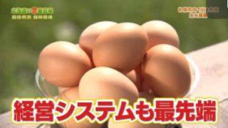 1×8いこうよ!「北海道の「食」最前線② 超自然派 鶏卵農場」 20180221