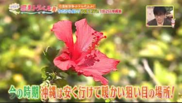 王様のブランチ松本潤登場「99.9」に隠された小ネタとは?▽今なら3万円で沖縄 20180224