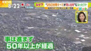 """ビビット レスリング""""パワハラ疑惑""""第三者調査で… 20180307"""