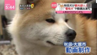 news every.藤井貴彦、小山慶一郎がきょう一日を分かりやすく 20180312