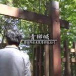 中島卓偉のお城へ行こう!せーの、キャッスル!キャッスル!「青柳城」 20180317