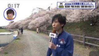 猫のひたいほどワイド▽生中継・早春に咲き誇る!満開の春めき桜まつり(南足柄市) 20180319