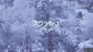 ノーナレ「津軽 雪空港」 20180326