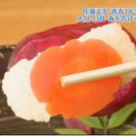 遠くへ行きたい「青春18きっぷで行く春の九州縦断旅…福岡~宮崎」佐藤正宏 20180401