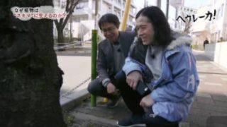 【新】又吉直樹のヘウレーカ!「なぜ植物はスキマに生えるのか?」 20180404