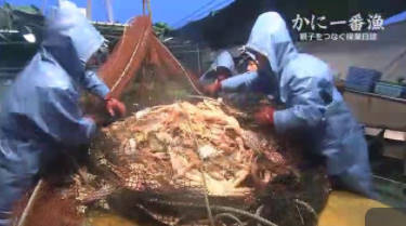 NNNドキュメント「かに一番漁~親子をつなぐ操業日誌」 20180408