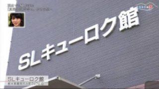 ふるさとの夢 20180411