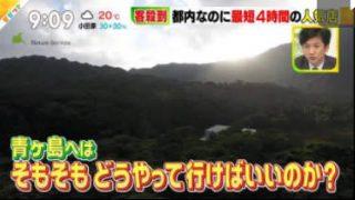 ビビット 春バテ花粉症とは? 大谷翔平に迫る 行きづらい人気店 20180411