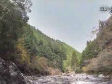 ノーナレ「けもの道 京都いのちの森」 20180430