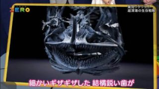 サイエンスZERO「世界記録更新!驚異の超深海魚」 20180506