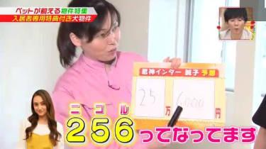 王様のブランチ【郷ひろみの買い物は駄菓子にお茶】 20180512