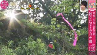 あさイチ「JAPA-NAVI 女性にうれしい!美肌・健康の里 島根」 20180517