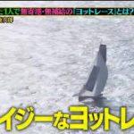 クレイジージャーニー 世界中の海をヨットで巡る、命知らずの男!その全貌を大公開 20180523