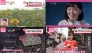 20180717(火)の動画リンク