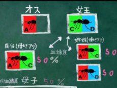 """又吉直樹のヘウレーカ!「サボる""""アリ""""はいないのか?」 20180719"""