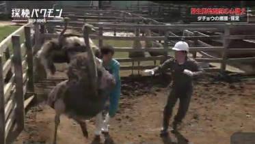 探検バクモン「めざせ飼育員!動物専門学校」 20180606