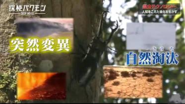 探検バクモン「生活が変わる!?昆虫テクノロジー」 20180613