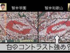 夏の高校野球100回記念「甲子園!細かすぎる応援マニュアル」 20180804
