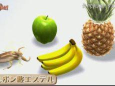 ダーウィンが来た!選▽毒ヘビを狩る!田んぼの王者タガメ美しい日本の里山で密着! 20180813