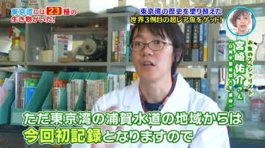 東京湾大調査3【全800種!激レアから猛毒までお魚コンプリート】 20180814