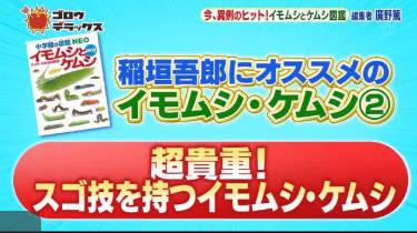 ゴロウ・デラックス【夏休みの自由研究に!今売れてる図鑑「イモムシとケムシ」】 20180816