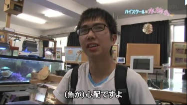 NNNドキュメント「ハイスクールは水族館!!」語り】桜井玲香(乃木坂46) 20180826