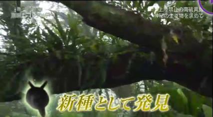 NHKスペシャル 秘島探検 東京ロストワールド 第1集「南硫黄島」 20180916