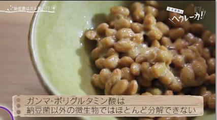 又吉直樹のヘウレーカ!「僕はなぜ納豆を食べるようになったのか?」 20180919
