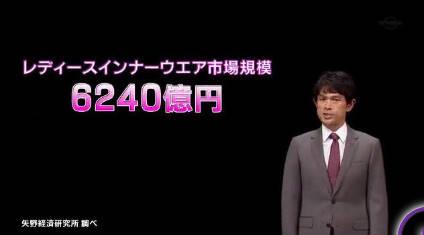 ガイアの夜明け【激突!ブラジャー戦争】 20181009