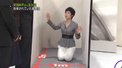 NEWS ZERO 拘束生活シリアで何が?…安田純平さん生出演▽有働由美子 20181102