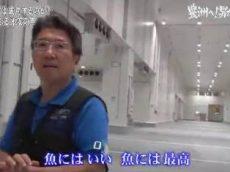ガイアの夜明け【東京新名所③「豊洲へ!男たちの闘い」】 20181106