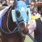 バース・デイ オジュウチョウサン…崖っぷちから人気競走馬へ復活!有馬記念舞台裏 20190112