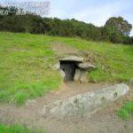 世界遺産「日本初撮影!5000年前のアイルランド巨石文明」 20190210