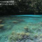 世界遺産「4K特別編~400の島々!パラオ…湖に海洋生物のナゾ」 20190303